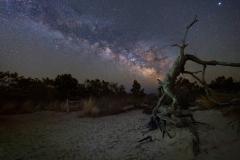 Assateague Island at Night